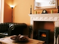 South Park Guest House Bed and Breakfast - Lounge Fireplace